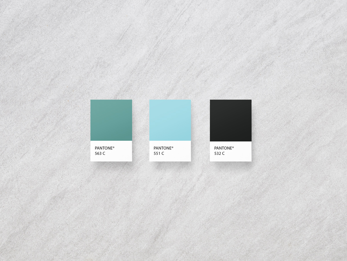 modern acupuncture branding and web design by Shelley Easter, color palette
